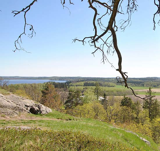 Hakoinen Castle Hill