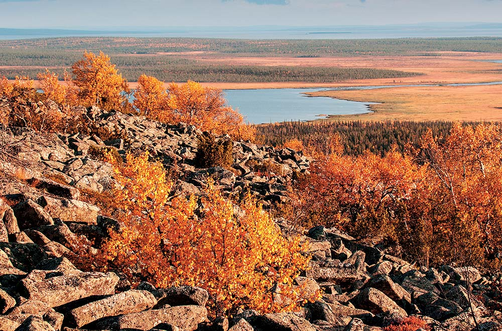 Lapland autumn foliage