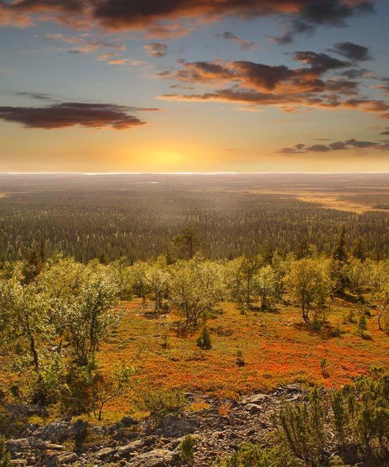 perhelomat suomessa Pieksamaki